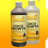 kokos_groei